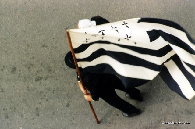Blanche hermine noir drapeau