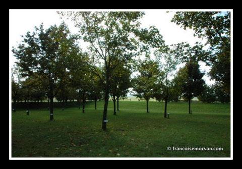 creney-memorial-cadre
